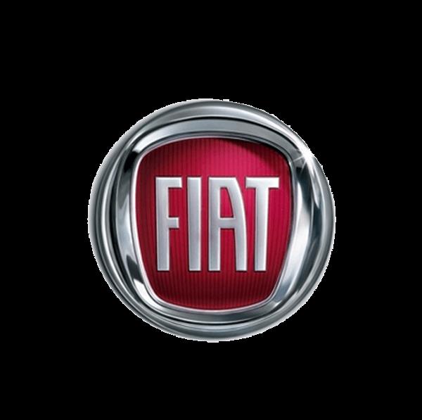 Камеры заднего вида для Fiat